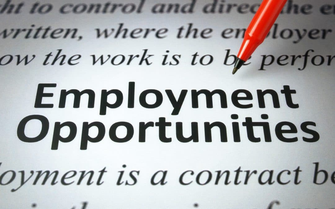 New Employment Opportunity: Executive Assistant